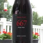 667 Pinot Noir Review